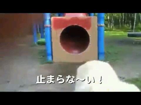 止まらな〜い!〜字幕
