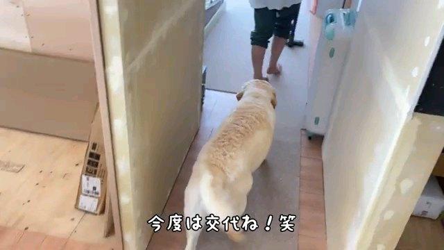今度は~字幕