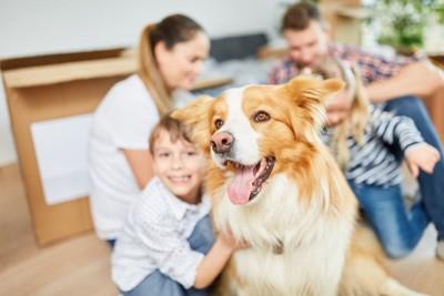 犬とピントがぼやけた家族