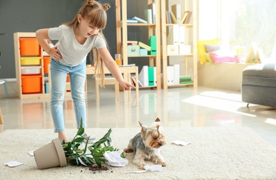 植木鉢を倒した犬を怒る女の子