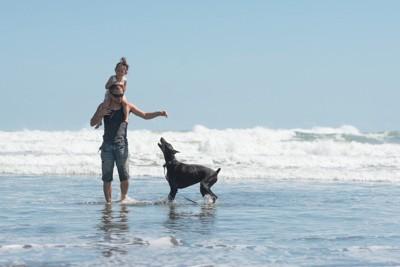 海で遊ぶ親子と犬