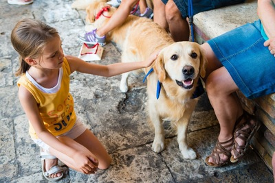 子供に触られている犬