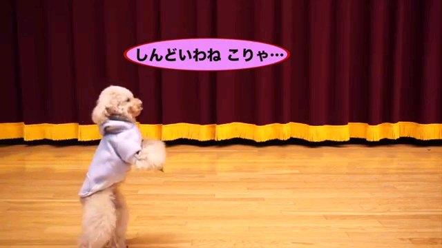 しんどいわね~字幕
