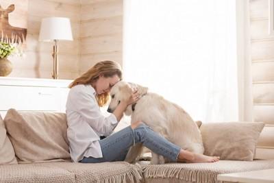 ソファーで犬と額を合わせる女性