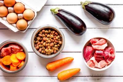 様々な食材とペットフード