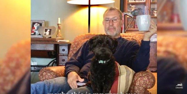 人のひざに座る犬