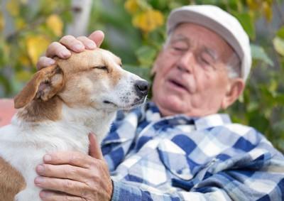 老紳士と犬