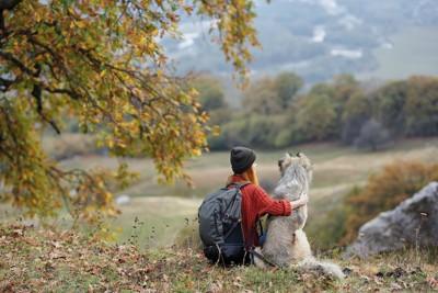 犬と一緒に山の景色を楽しむ女性
