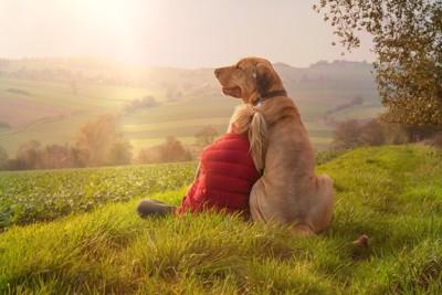 夕陽を眺める人と犬