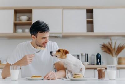 食事をする男性と犬