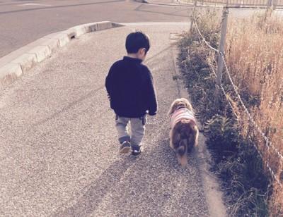散歩中のりょうくんと息子