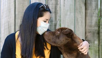 マスクした飼い主と犬