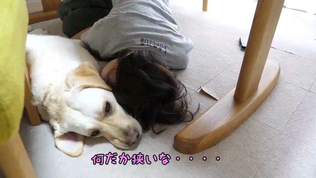 起きたら、~字幕