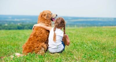 芝生に座る少女とゴールデン