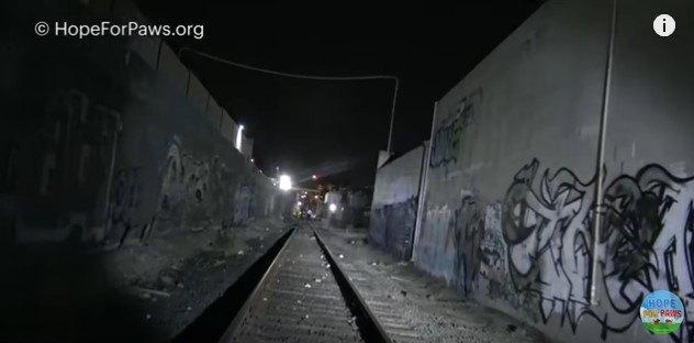 塀にはさまれた線路