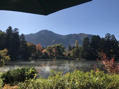 テラスから眺める金鱗湖の景色