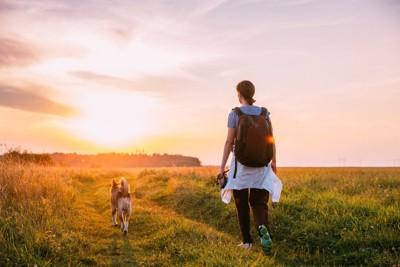 緑の中を歩く犬と女性の後ろ姿