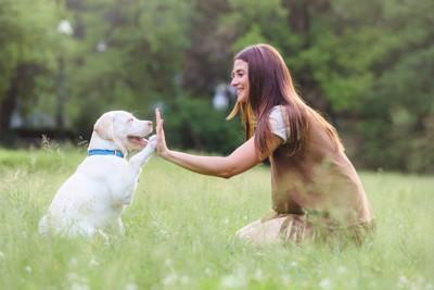 芝生の上でハイタッチする女性と犬