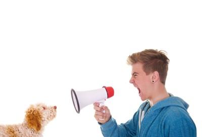 拡声器を犬に向けて大声を出す男性
