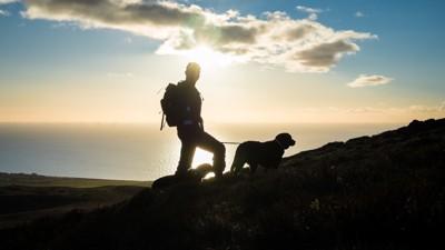 犬と登山する人間