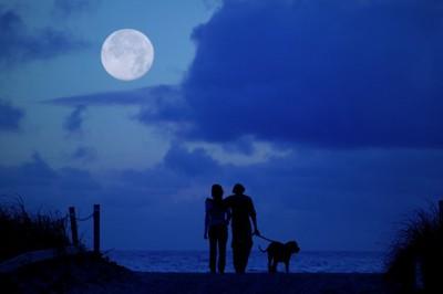 満月の夜の散歩