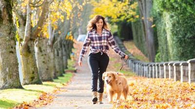 落ち葉の中を楽しそうに散歩する女性と犬