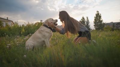 犬の頬に手を当てる女性