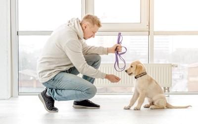 子犬のしつけをしている男性