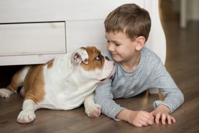 テーブル下に入ろうとする犬