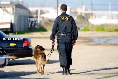 警察と歩く警察犬