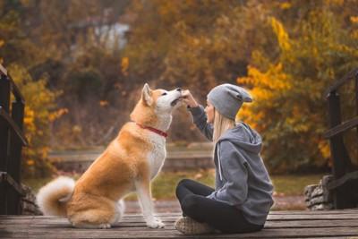 女性と秋田犬