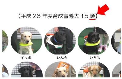 北海道盲導犬協会の資料