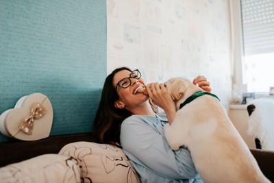 飼い主さんの腕に抱きつく犬
