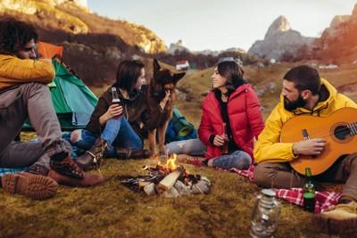 犬とキャンプする人たち