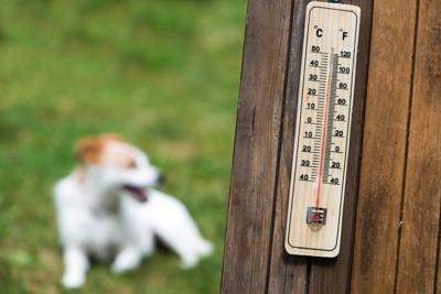 外で干している温度計