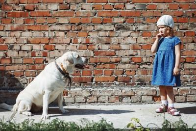 困った顔の女の子とラブラドールレトリバー