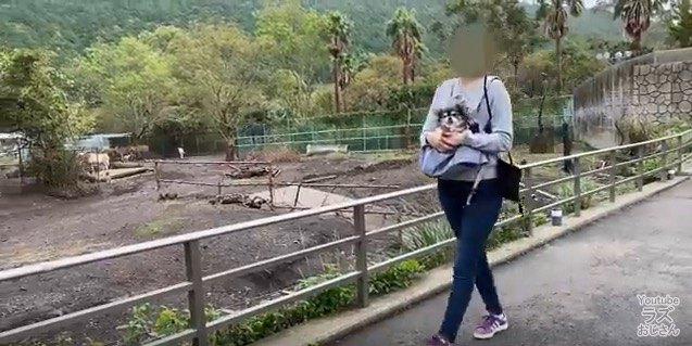 動物園ナウ