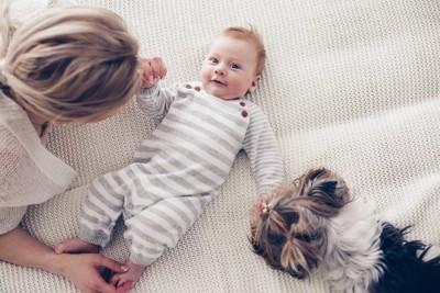 赤ちゃんとお世話をする女性と犬