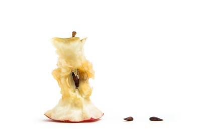 りんごの芯と種