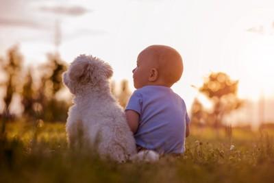 並んで座る子供と犬