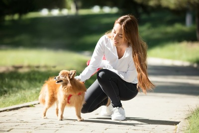 散歩中に犬を撫でる女性