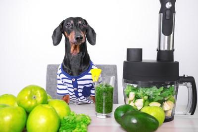 野菜ジュースと犬