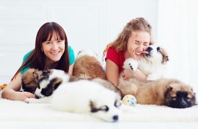 二人の女性と子犬たち