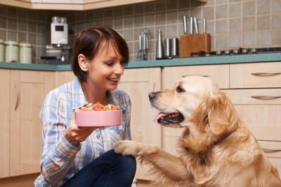 ごはんを持った女性とオテをする犬