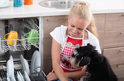 食洗機と犬