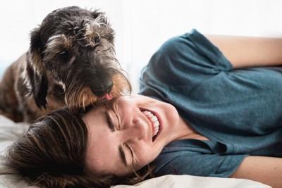 飼い主を喜ばそうと舐める犬
