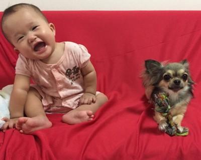 赤ちゃんと同居