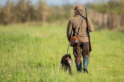 猟師と一緒に歩くポインター