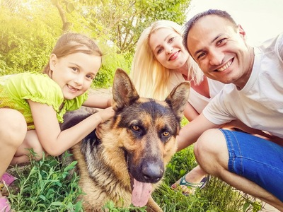 家族とシェパード