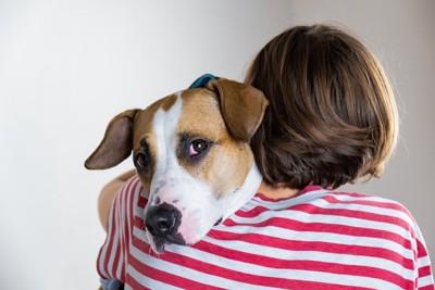 女性にハグされる垂れ耳の犬